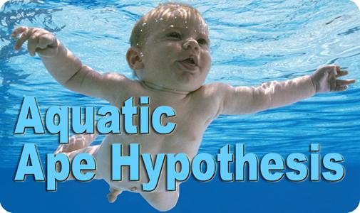 Aquatic_Ape_BUTTON